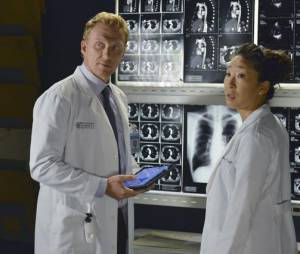 Grey's Anatomy saison 10 : Owen et Cristina sur une photo