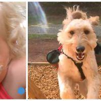 Cette petite fille malade ne pourrait pas vivre sans son chien : il lui sauve la vie tous les jours