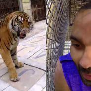 """Tony Parker """"attaqué"""" par un tigre dans Fort Boyard : même pas peur !"""