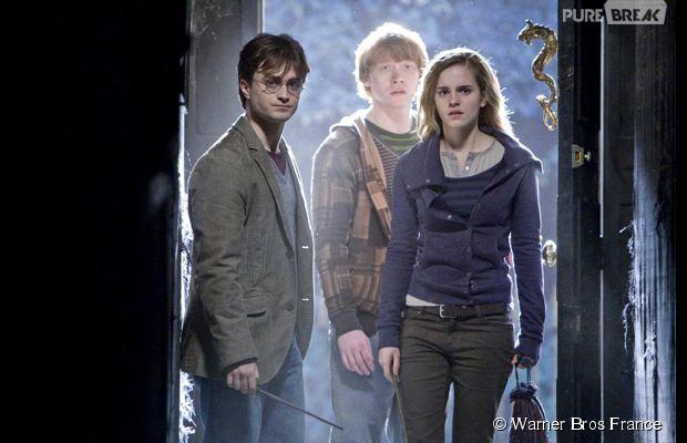 Harry Potter : J.K Rowling révèle des détails sur l'arbre généalogique de son héros sorcier