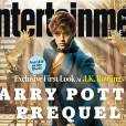 Les Animaux Fantastiques : Eddie Redmayne est le héros du spin-off d'Harry Potter