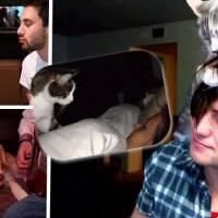 Zoo : Tu sais que ton animal de compagnie te déteste quand...