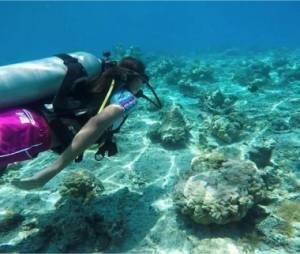 Marine Lorphelin dévoile son incroyable voyage à Tahiti sur Instagram
