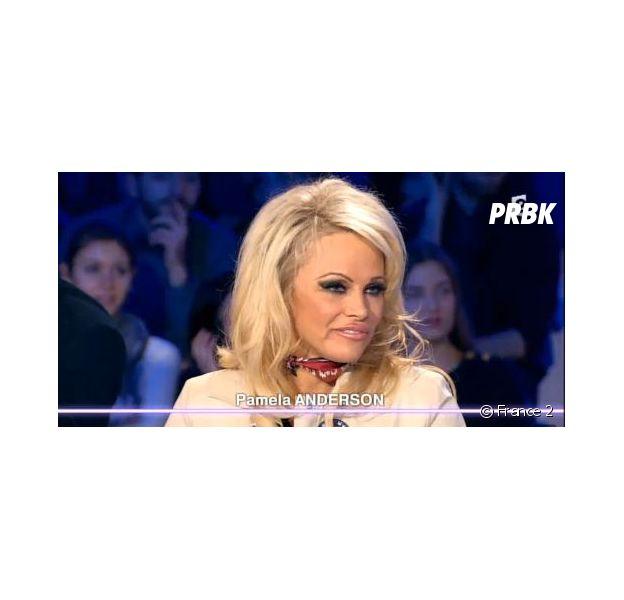 Pamela Anderson répond aux députés français dans On n'est pas couché, le 23 janvier 2016