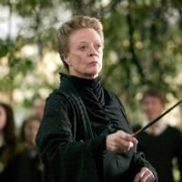 Harry Potter : les fans de la saga en deuil