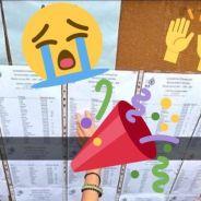 Résultats Bac 2016 : hystérie, larmes... Les meilleures réactions Twitter
