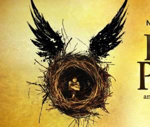 Harry Potter : un détail de la pièce de théâtre énerve les fans