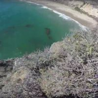 Un youtubeur saute d'une falaise et frôle la mort 😱