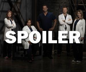 Grey's Anatomy saison 13 : bientôt un nouveau couple en approche ?