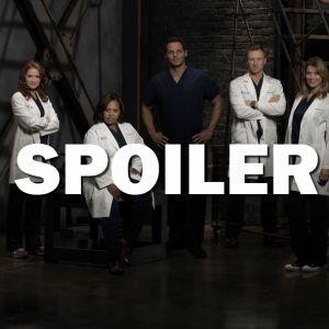 Grey's Anatomy saison 13 : bientôt un nouveau couple surprise ?