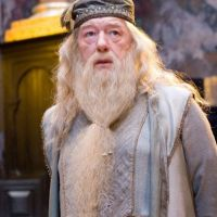 Les Animaux Fantastiques 2 : découvrez qui jouera Dumbledore !