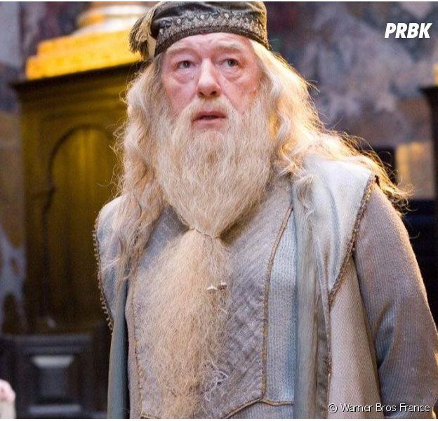 Les Animaux Fantastiques 2 : découvrez qui va jouer Dumbledore
