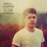 """""""Slow Hands"""" : Niall Horan dévoile son nouveau single solo 🎶"""