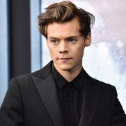 Harry Styles harcelé par des groupies en nuisettes chez lui : ses fans furieuses sur Twitter