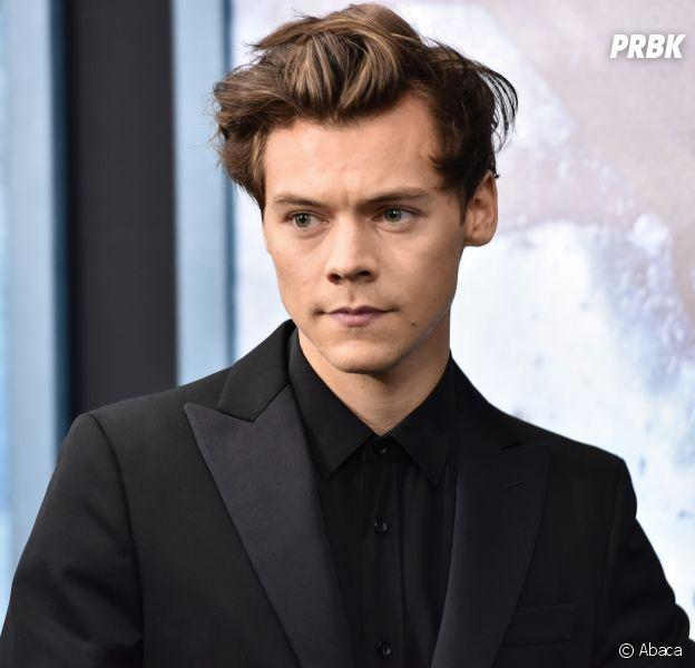 Harry Styles harcelé par des groupies : ses fans poussent un coup de gueule sur Twitter