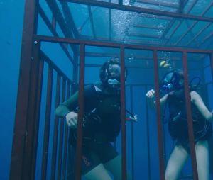 Claire Holt et Mandy Moore dans 47 Meters Down
