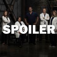 Grey's Anatomy saison 14 : le départ de (SPOILER) énerve les internautes