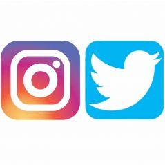 Instagram et Twitter : voilà le top 100 des marques les plus photographiées