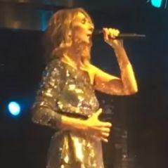 Céline Dion déchaînée sur scène : les fans adorent son remix avec Steve Aoki !