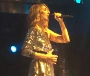 """Céline Dion et Steve Aoki : leur remix endiablé de """"My Heart Will Go On"""" !"""