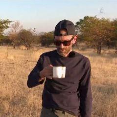 WILD : bouse d'éléphant, diarrhée... 5 séquences qui ont choqué les téléspectateurs