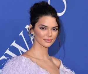 """Kendall Jenner en couple avec Anwar Hadid ? Bella et Gigi seraient """"choquées"""" et furieuses !"""
