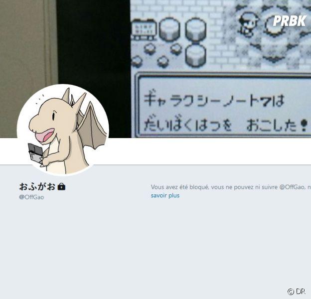 OffGao a bloqué des millions d'utilisateurs de Twitter... sans raison !