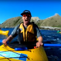 Cette otarie qui gifle un kayakiste avec un poulpe est en train de casser internet 🐙