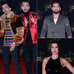 NMA 2018 : Bigflo & Oli, Kendji Girac et Ariana Grande gagnants, le palmarès complet