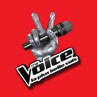 The Voice 8 : exit l'audition finale, une nouvelle étape attend les candidats