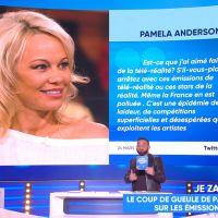 Pamela Anderson : son salaire démentiel pour 35 minutes dans Les Anges révélé par Matthieu Delormeau
