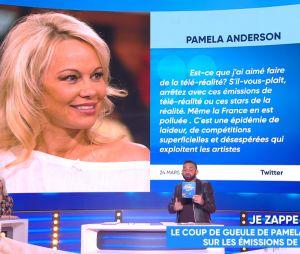 Pamela Anderson : son salaire pour 35 minutes dans Les Anges révélé par Matthieu Delormeau