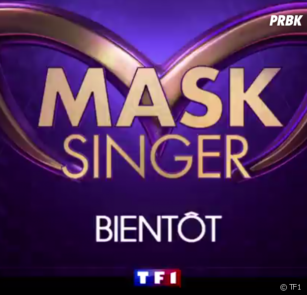 Mask Singer : Kev Adams, Jarry, Alessandra Sublet... les jurés du télé-crochet dévoilés