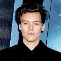 Harry Styles séparé de Camille Rowe : une rupture très douloureuse pour le chanteur