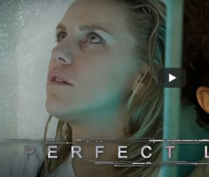 Perfect Love 2 - Olivier Dion et Emy LTR