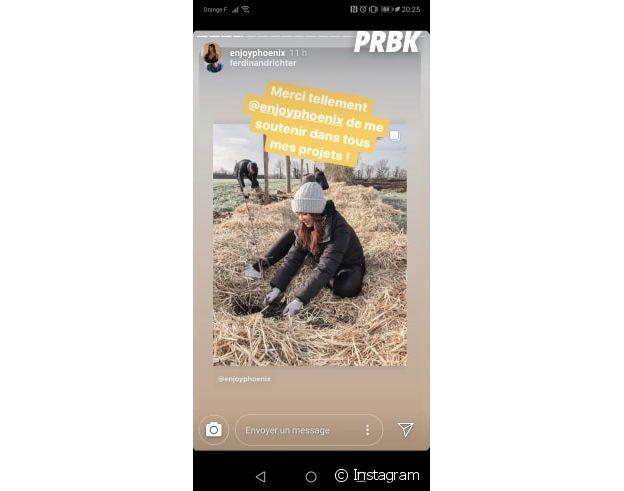 EnjoyPhoenix, Tibo InShape et Juju FitCats engagés pour la planète, ils plantent des arbres