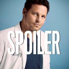 Grey's Anatomy saison 16 : un retour possible pour Alex ?