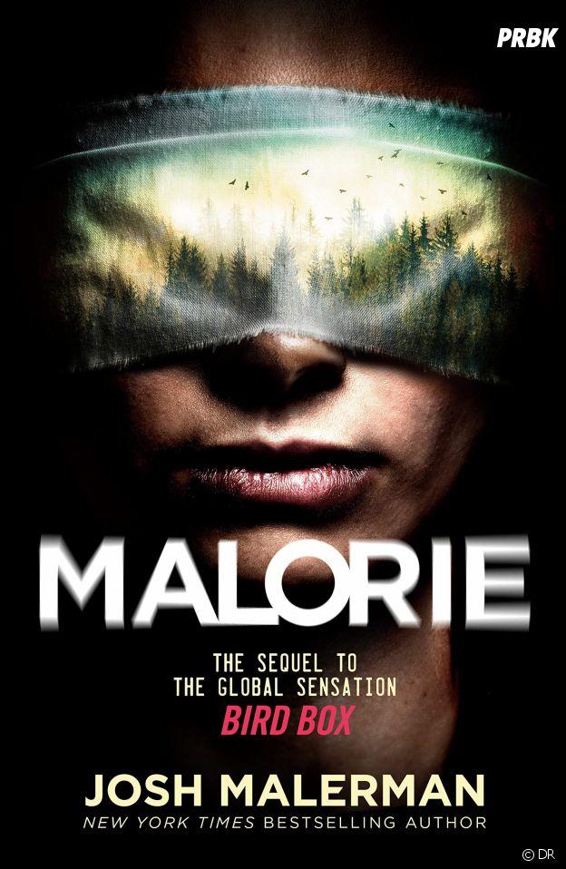 Malorie, la suite de Bird Box en livre, sort en juillet 2020 aux Etats-Unis