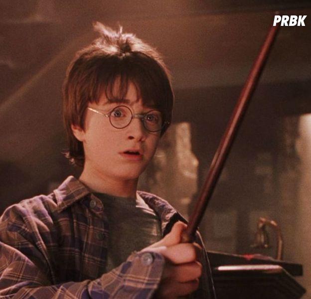 Harry Potter à l'école des sorciers : une fan est devenue riche... grâce au livre