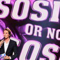 Sosie ! Or not sosie ? avec Vincent Cerutti sur TF1 ... le 1er janvier 2011