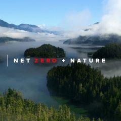 Netflix dévoile son plan pour réduire son empreinte carbone à 0 d'ici fin 2022