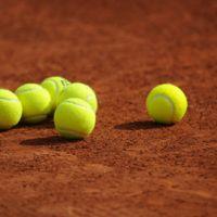 Roland Garros 2011 ... le tirage au sort à 11h30