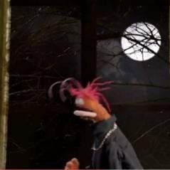 Les Muppets revisitent Twilight, Paranormal Activity et le Chat Potté (VIDEO)
