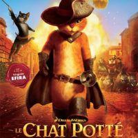 Le Chat Potté : pas plus fort que Shrek au box-office mais ''Chat Po'' l'artiste