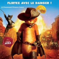 Le Chat Potté : pas plus fort que Shrek au box-office mais ''Chat Po'' l'artiste