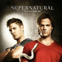 Supernatural saison 8 : 5 choses à savoir pour le retour ! (VIDEO)