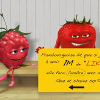 """Facebook : le chanceux aux """"1 million de likes"""" inspire le web"""