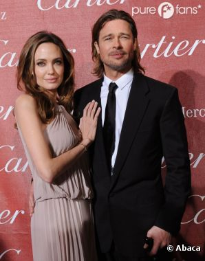 Brad Pitt et Angelina Jolie vont avoir leur marque de vin