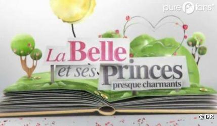 La Belle et ses princes presque charmants 2 sera bientôt diffusé sur W9