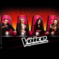 The Voice : Une saison 3 déjà en préparation ?